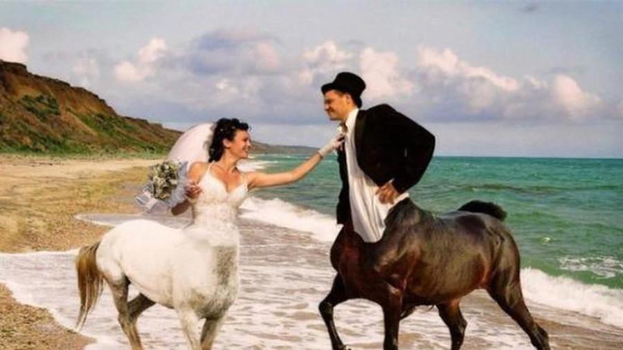 Thuê nhầm tình cũ chụp ảnh cưới, cặp dâu rể hết hồn xem lại dung nhan-11