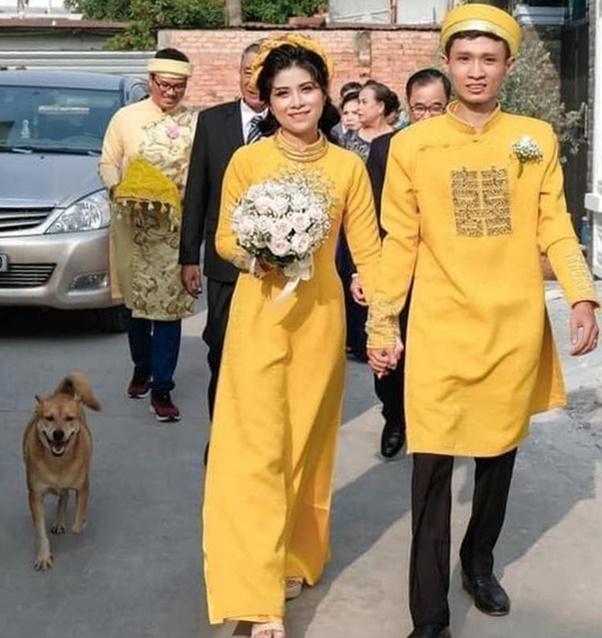 Biểu cảm hớn hở của chú chó vào ngày chủ kết hôn gây bão mạng xã hội, lý do khiến ai cũng gật gù-2