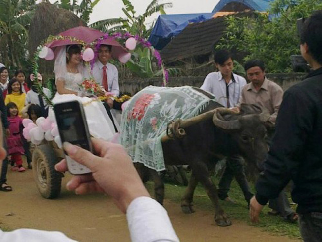 Màn rước dâu lạ lùng: Cả họ nhà trai gồng mình đẩy cô dâu và dàn bê tráp trên xe rùa vã cả mồ hôi-8
